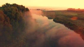 Silhueta do homem de negócio Cowering Pescador no nascer do sol no rio no barco vídeos de arquivo