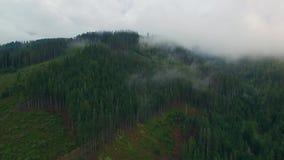 Silhueta do homem de negócio Cowering Voo sobre as montanhas altas em nuvens bonitas Tiro da câmera aérea Areje nuvens névoa vapo video estoque