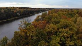 Silhueta do homem de negócio Cowering Voo sobre o rio Dia bonito do outono A câmera voa até o rio sobre a floresta 4k video estoque