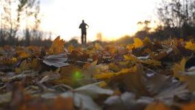 Silhueta do homem novo que movimenta-se no parque do outono e que pisa nas folhas secas Indivíduo que corre com a paisagem outona filme
