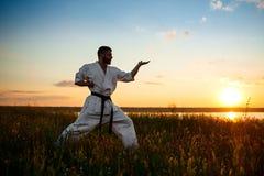 Silhueta do karaté desportivo do treinamento do homem no campo no nascer do sol Fotografia de Stock