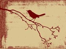 Silhueta do pássaro ilustração royalty free