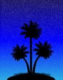 Silhueta do palmeiras na noite Fotos de Stock Royalty Free