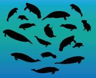 Silhueta do peixe-boi ilustração royalty free