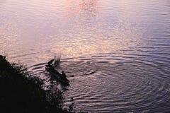 Silhueta do pescador Fotos de Stock