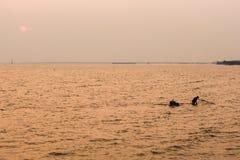 Silhueta do pescador no céu alaranjado no fundo do por do sol fotografia de stock royalty free