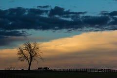 Silhueta do por do sol de Kentucky Imagens de Stock