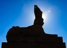 A silhueta do Sphynx na terraplenagem da universidade no halo da luz do sol imagem de stock royalty free