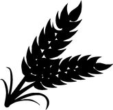 Silhueta do trigo no fundo branco Fotos de Stock Royalty Free