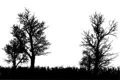 Silhueta do vetor da natureza ilustração do vetor