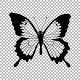 Silhueta do vetor do monarca da borboleta Foto de Stock Royalty Free