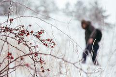 Silhueta do viajante para escalar a montanha no inverno Foto de Stock Royalty Free