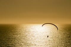 Silhueta do voo do paraglider no por do sol Imagem de Stock Royalty Free