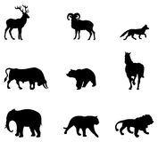 Silhueta dos animais Fotografia de Stock Royalty Free