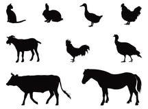 Silhueta dos animais de exploração agrícola Fotografia de Stock