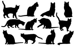 Silhueta dos gatos do vetor Foto de Stock