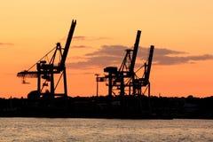 Silhueta dos guindastes no porto Imagens de Stock Royalty Free