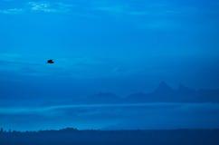 Silhueta dos pássaros de vôo Imagens de Stock