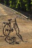 Silhueta e sombra da bicicleta Foto de Stock Royalty Free