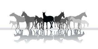 Silhueta ereta dos cavalos com reflexão Fotos de Stock