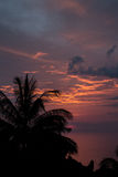 Silhueta exótica dos palmtrees no nascer do sol no oceano tropico fotografia de stock