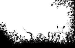 Silhueta floral dos campos Foto de Stock Royalty Free