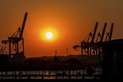 Silhueta grande de muitos guindastes no porto no por do sol foto de stock