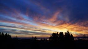 Silhueta horizontal do fundo da paisagem da floresta do por do sol foto de stock royalty free