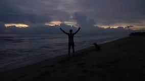 Silhueta masculina nova feliz que salta acima na praia no por do sol, levantando as mãos video estoque