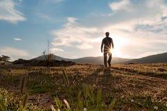Silhueta no por do sol na flor -1 do prado Fotografia de Stock Royalty Free