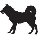 Silhueta preta de um cão Imagens de Stock