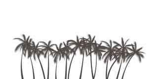 Silhueta realística das palmas Imagem de Stock