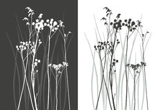 Silhueta real da grama - vetor Imagens de Stock