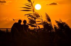 Silhueta romântica de um par loving no por do sol Foto de Stock