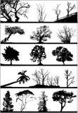 Silhuetas da árvore ajustadas Fotos de Stock Royalty Free