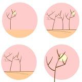 Silhuetas da árvore no grupo da manhã Imagem de Stock Royalty Free