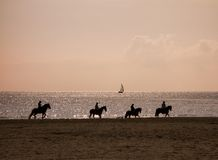 4 silhuetas da equitação na praia Imagens de Stock Royalty Free