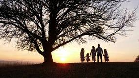 Silhuetas da família feliz que andam no prado perto de uma árvore grande durante o por do sol vídeos de arquivo