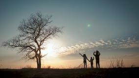 Silhuetas da fam?lia feliz que andam no prado perto de uma ?rvore grande durante o por do sol filme