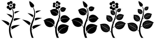 Silhuetas da flor Imagens de Stock