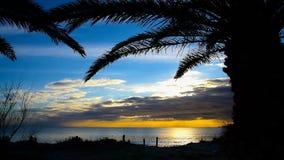 Silhuetas da palma pelo mar no por do sol imagens de stock
