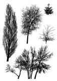 Silhuetas das árvores   ilustração stock