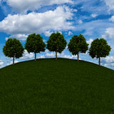 Silhuetas das árvores em um prado verde Fotos de Stock Royalty Free