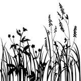 Silhuetas das flores e da grama Imagens de Stock