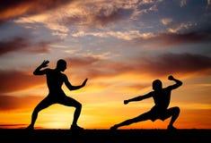 Silhuetas de dois lutadores no fundo do por do sol Imagem de Stock Royalty Free