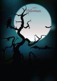 Silhuetas de Halloween   Imagens de Stock