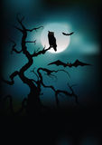 Silhuetas de Halloween   Fotografia de Stock