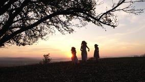 Silhuetas de três meninas que correm no prado perto da árvore durante o por do sol video estoque