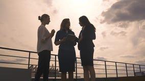 Silhuetas de um grupo de mulheres dos homens de negócios contra o céu e as nuvens Meninas na roupa do negócio em uma reunião video estoque