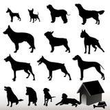 Silhuetas do cão do vetor Imagem de Stock